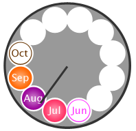 Seasonality clock